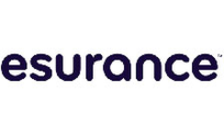 .esurance Domain Name