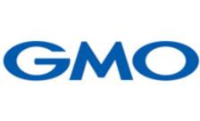 .gmo Domain Name