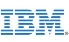 .ibm Domain
