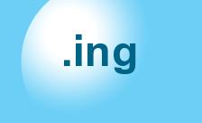 .ing Domain