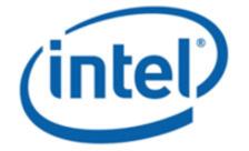 .intel Domain Name