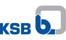 .ksb Domain