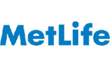 .metlife Domain Name