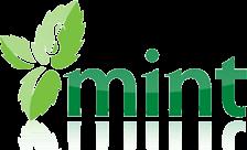 .mint Domain Name