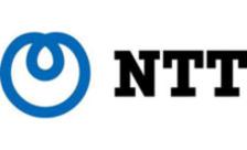 .ntt Domain Name