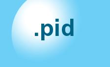 .pid Domain Name