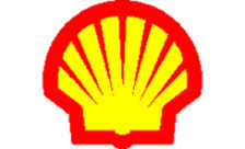 .shell Domain Name