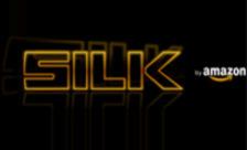 .silk Domain Name