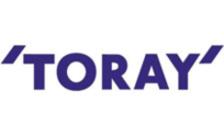 .toray Domain Name