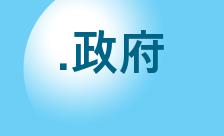 .政府 Domain Name